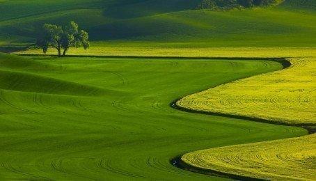 Tải Hình Nền Phong Cảnh Đẹp Cho Máy Tính