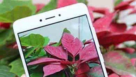 Mua Xiaomi Redmi 4a, 4x, Note 4x Thượng Đình, Khương Trung, Thanh Xuân - Hà Nội