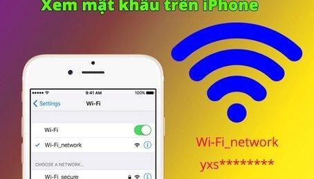 Những ứng dụng xem mật khẩu Wifi trên iPhone đã Jailbreak