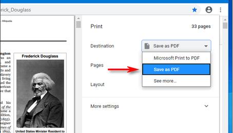 Cách lưu một trang web thành file PDF trên Google Chrome