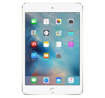 iPad mini 4 cũ (4G Wifi)