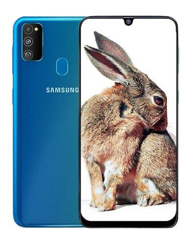 Samsung Galaxy M30s (4GB/64GB)